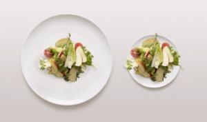 comparaison de 2 assiettes de taille différentes contenant la même quantité de nourriture